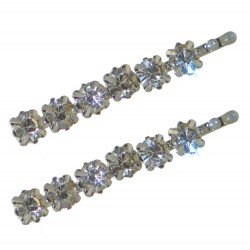 BANEBERRY Pair Silver tone Crystal Hair Clips