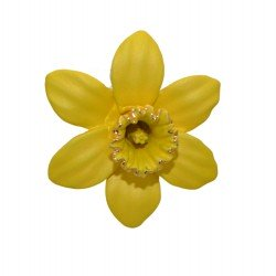 DAFFODIL gold plated 35mm small brooch by Rodney